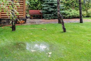 How Find Hidden Water Leaks Plumbing