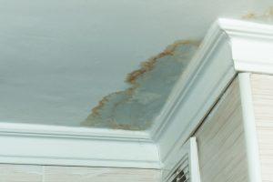 Guide Water Leak Detection In Homes